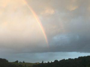 Pothos Sky